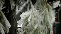 Freezing Rain and Cold Temperatures Create Wicked Winter Weather