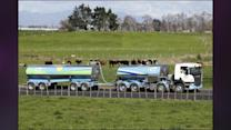 Scare Or No Scare, Customers Have Little Choice But Fonterra