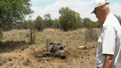 Rhino poaching: South Africa's deadly dilemma