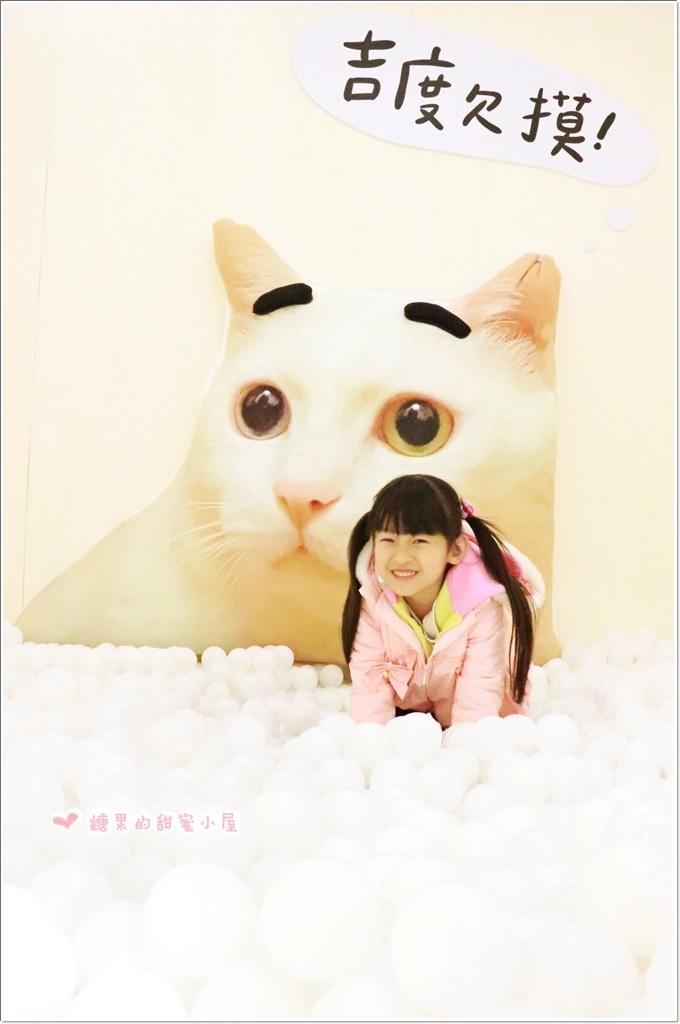 萌系星球汪喵特展 (19).JPG
