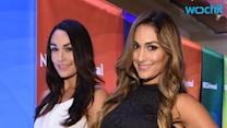 Brie and Nikki Bella Argue Over Their WWE Future