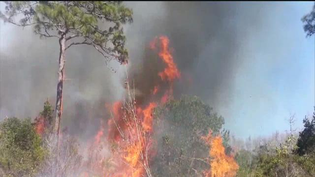 Spring shaping up to be bad season for central Florida brush fires