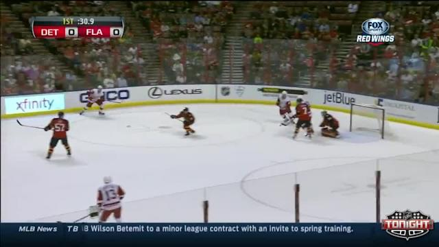 Detroit Red Wings at Florida Panthers - 02/06/2014