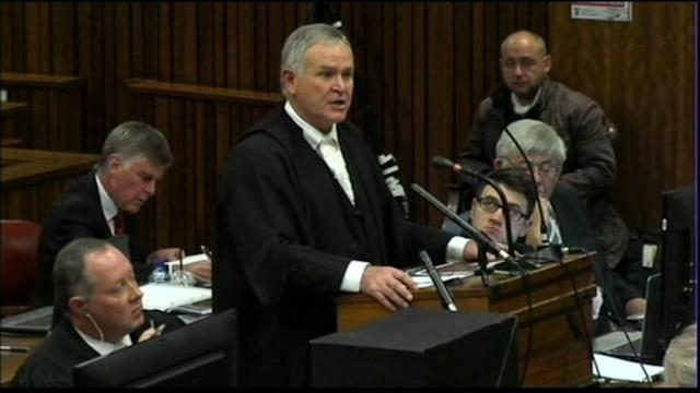 Defense Forensic Expert Backs Pistorius' Story