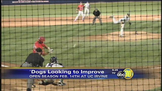 Diamond 'Dogs Look to Improve in 2014
