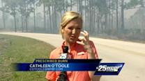 Cathleen O'Toole to tourists: Prescribed burn 'nothing to worry about here'