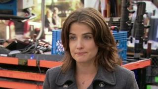 Delivery Man: Cobie Smulders