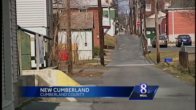 New Cumberland woman has plan to control stray cats