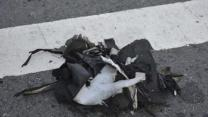 Pressure-Cooker Bomb Eyed in Boston Marathon