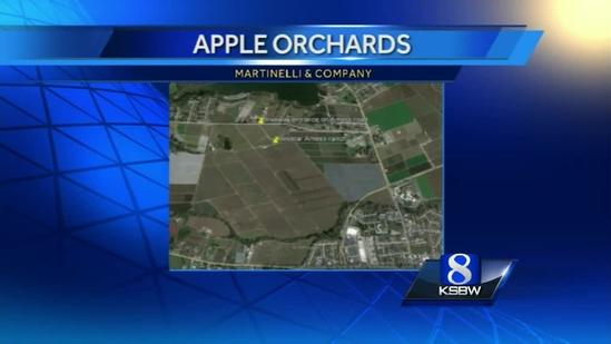 Watsonville's John Martinelli acquires 175 acres of apple orchards