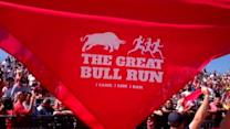 Virginia Holds Its Version of the 'Running of the Bulls'