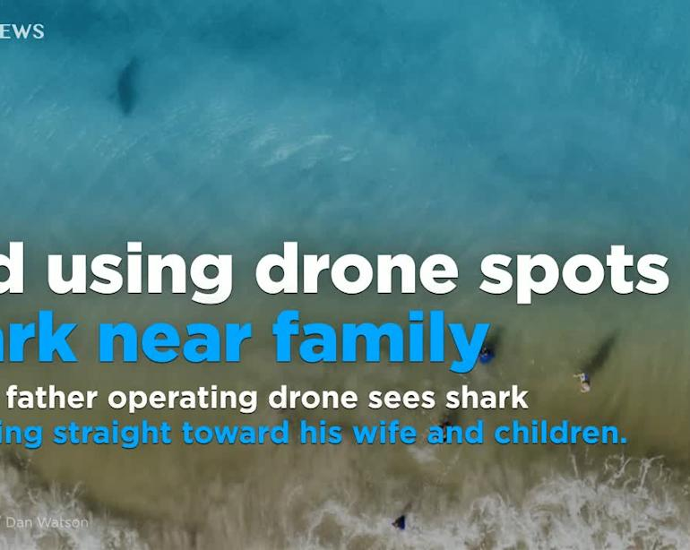 Father using drone spots shark heading straight toward his wife and