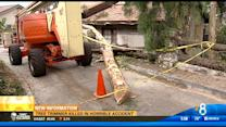 Tree trimmer killed in horrible accident in East County