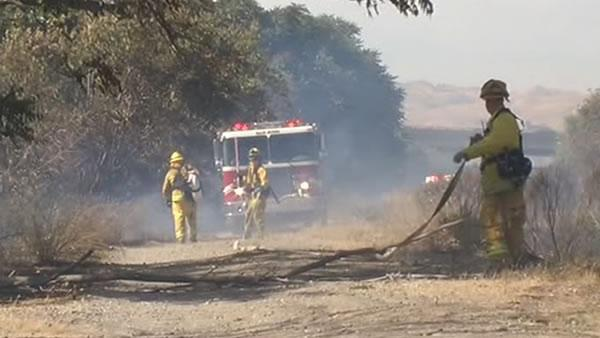 Person detained in connection with SJ grass fire