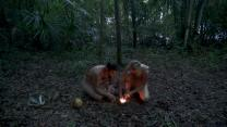 'Naked & Afraid': Light My Fire