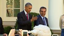 Obama pardons Turkey at White House ceremony