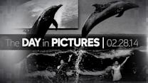 Day in Pictures: 2/28/14