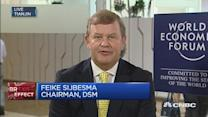 We need a strong Europe: DSM chairman