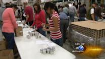 Chicago participates in National Day of Service