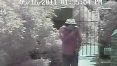 Surveillance System Catches Thief On Tape