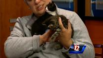 Pet Of The Week: Mercedes and Mandrick