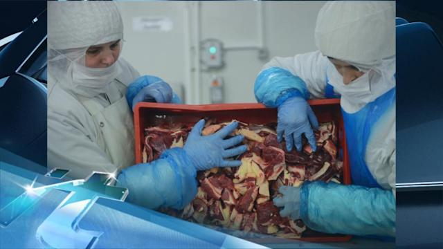 Breaking News Headlines: Lawsuit Aims to Block Horse Meat Inspections