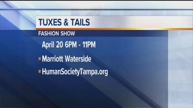 Positively Tampa Bay: Tuxes & Tails