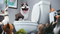 'The Secret Life of Pets' Trailer: Super Bowl TV Spot