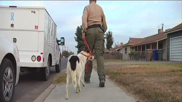 On Patrol With Kern County Animal Services