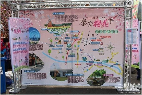 后里泰安櫻花季(26).JPG