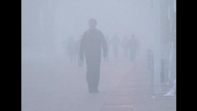 Smog disrupts traffic in northeast China