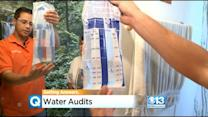 Water Districts Provide Free Advice, Help Finding Water Leaks During California Drought
