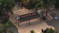 Teenage girl bit by rabid bat at Oakland Zoo
