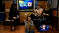 Pet Of The Week: Maggie,Rocky and Fred
