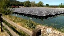 Napa Winery Harnesses Power From Solar Panels Floating In Pond