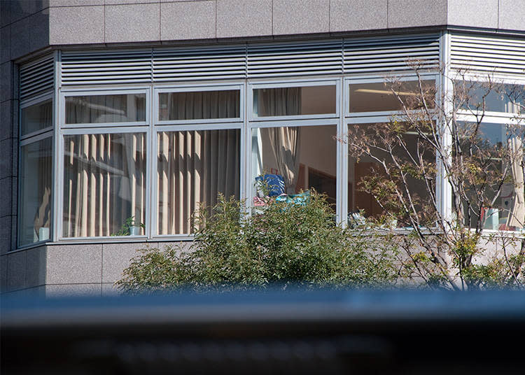 往銀座的路上能看到辦公室大廈的2樓。由於窗簾拉開的關係,裡頭發生什麼事都能看的一清二楚呢!