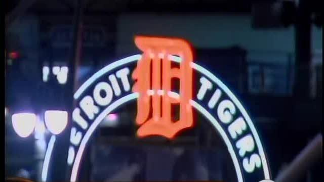 Fans revel in Tigers success