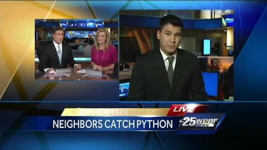 Vero Beach woman finds 8-foot python in front yard