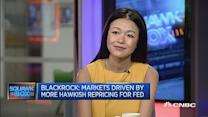 The Fed is a key driver for EM: Strategist
