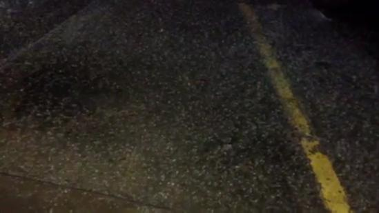 Raw video: Tuesday night weather in Woodward
