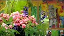 Doug Oster: Unique Garden Plants And Herbs