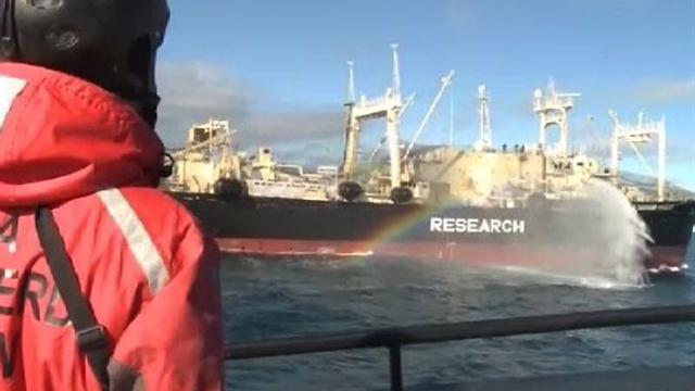 Japan suspends Great Southern Ocean whaling slaughter