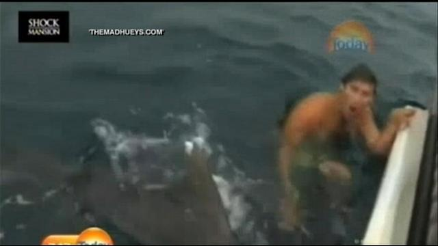 Shark Attack Near Miss Caught on Camera