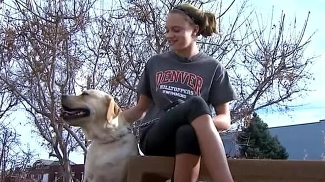 Homework-Eating Dog Undergoes Surgery