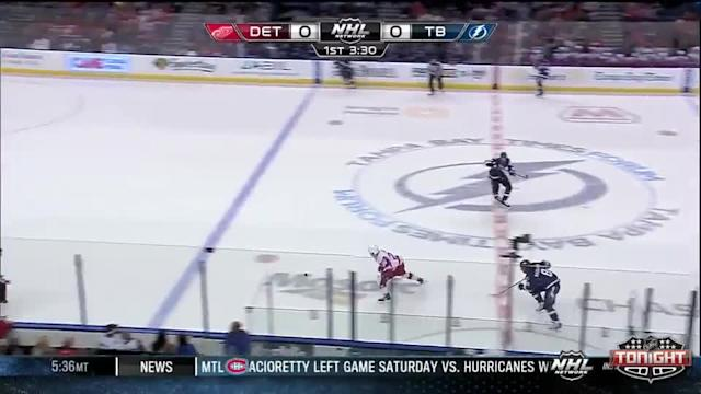 Detroit Red Wings at Tampa Bay Lightning - 02/08/2014
