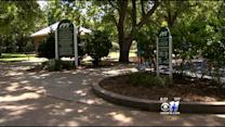 Tarrant County Diagnoses Its 1st Case Of Chikungunya