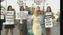 SeaWorld wins bid to expand Orca tanks