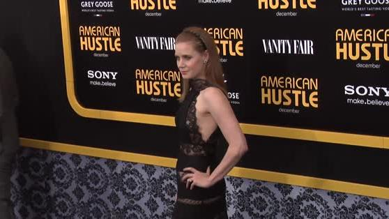 Amy Adams Wows in Sheer Lace at American Hustle Premiere