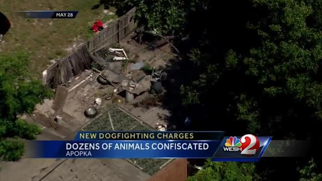 New charges filed in dog-fighting ring case in Apopka