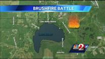 Brush fire scorches 150 acres near Osteen